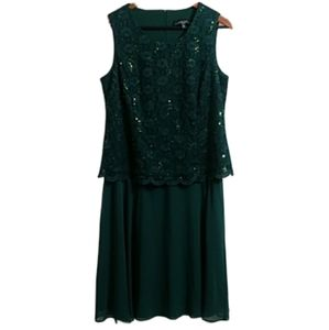New R & M RICHARDS Sleevless Lacey Dress 14P